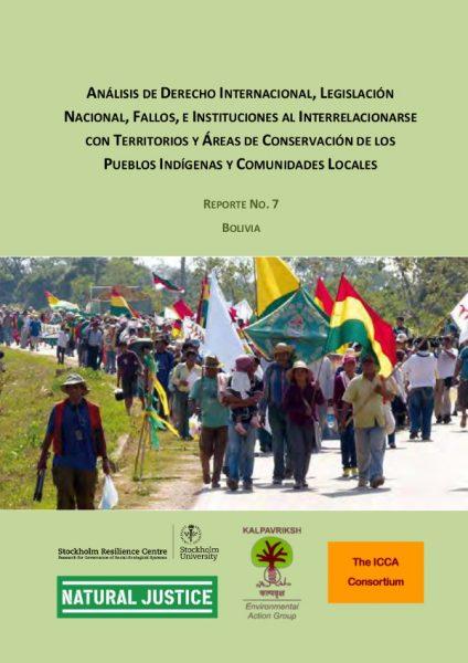 Legal Review No 7 Bolivia
