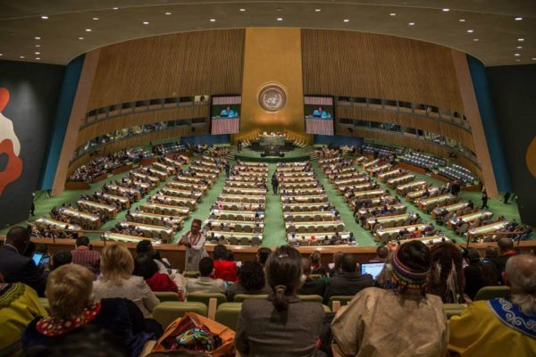 Implementing the United Nations Declaration on the Rights of Indigenous Peoples