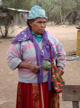 Paraguay – Stop deforestation affecting the Ayoreo People living in voluntary isolation