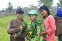 Indonesia: The Dayak Limbai Bunyau Indigenous community: defending our ICCA
