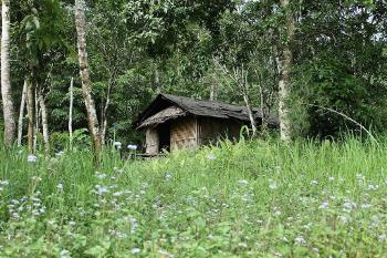 India: Tzüla Green Zone