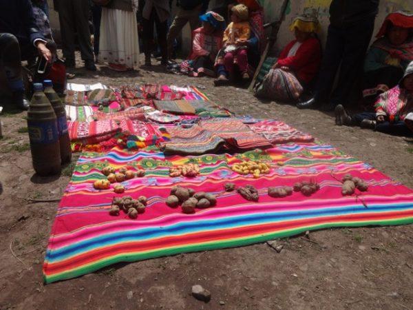 TICCA y la Iniciativa sobre los Sistemas Ingeniosos de Patrimonio Agrícola Mundial (SIPAM), Cusco, 7 de noviembre de 2014