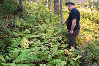 Finland – Havukkavaara Forest Under Threat