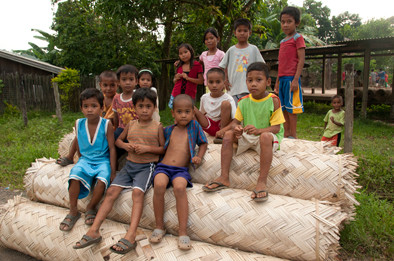 Pala'wan children sat on rolls of bamboo to be sold in the local market.Oil palm plantations are responsible for the depletion of bamboos and other NTFPs.