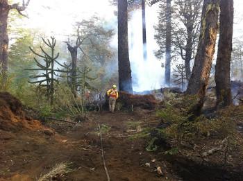 Chile – Incendio devastador amenazando el territorio de las comunidades de Quinquén y de Icalma