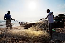 Honduras: Preocupación Sobre la ley de pesca y acuicultura en Honduras