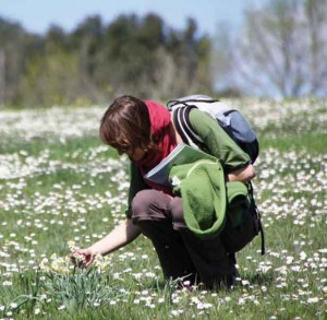 Caring together for nature in Europe
