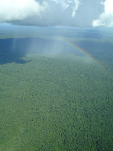 Inhibition of Amazon Deforestation and Fire by Parks and Indigenous Lands