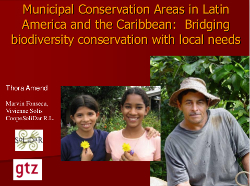 Municipal Conservation areas in Latin America and the Caribbean: Bridging biodiversity with local needs