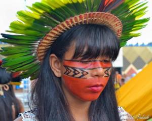 Territorios y áreas conservadas por pueblos indígenas en la región Andina Amazónica