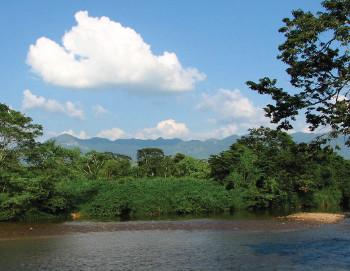 Chimalapas: La defensa del territorio y de los bienes naturales como un factor de identidad indígena