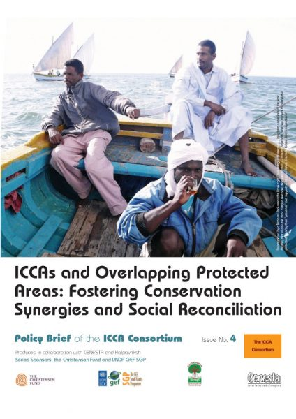 ICCA Consortium Policy Brief no 4