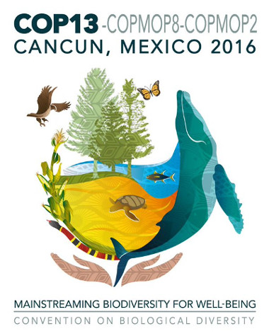The Consortium at the 13th Conference of the Parties of the Convention on Biological Diversity (CBD COP 13)