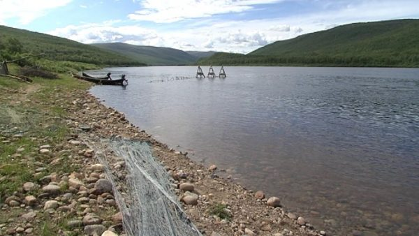 Saami traditional fishing rights threatened in Finland and Norway