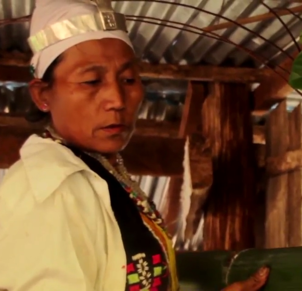 The Salween Peace Park : A Place for All Living Things to share Peacefully