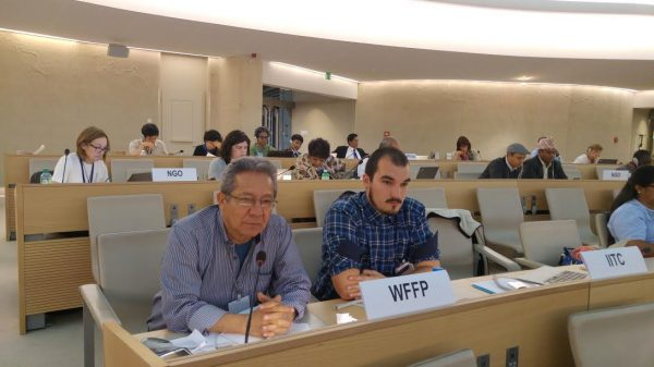 Open-ended intergovernmental working group on a United Nations declaration on the rights of peasants and other people working in rural areas