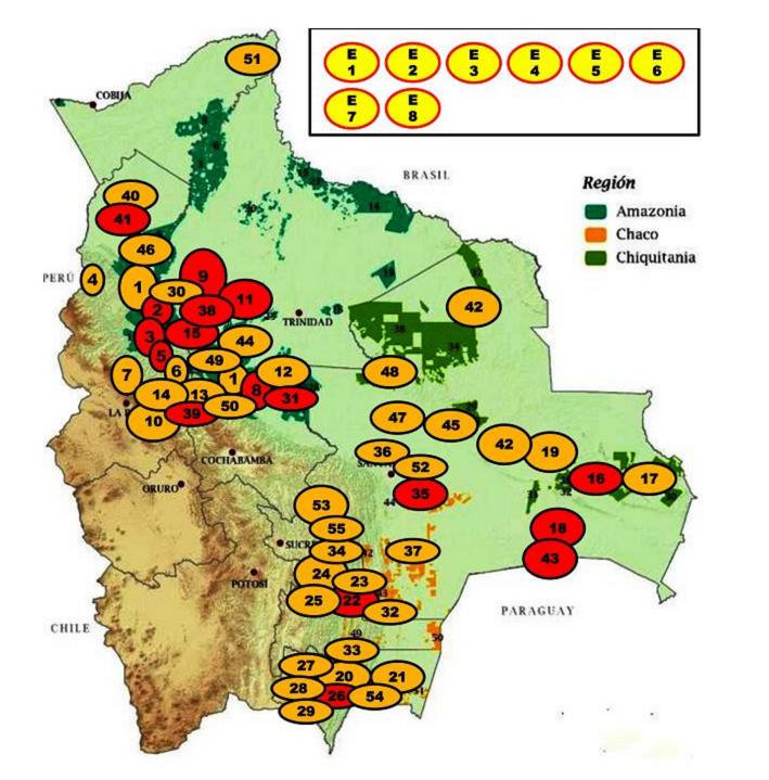Human Rights Violations of Indigenous Peoples in the Bolivian Lowlands
