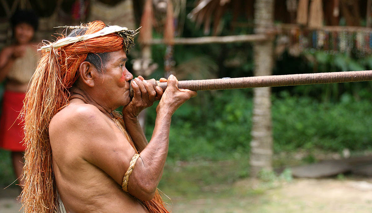 Conservation performance of different conservation governance regimes in the Peruvian Amazon