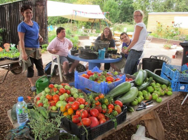 The local community food growing revolution: a perspective from Bristol, the UK