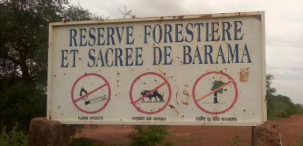 Les APAC au Burkina Faso : se préparer à la création d'une organisation nationale