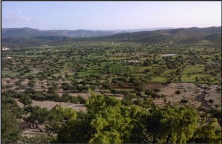Aires conservées autochtones et communautaires au Maroc : les agdals