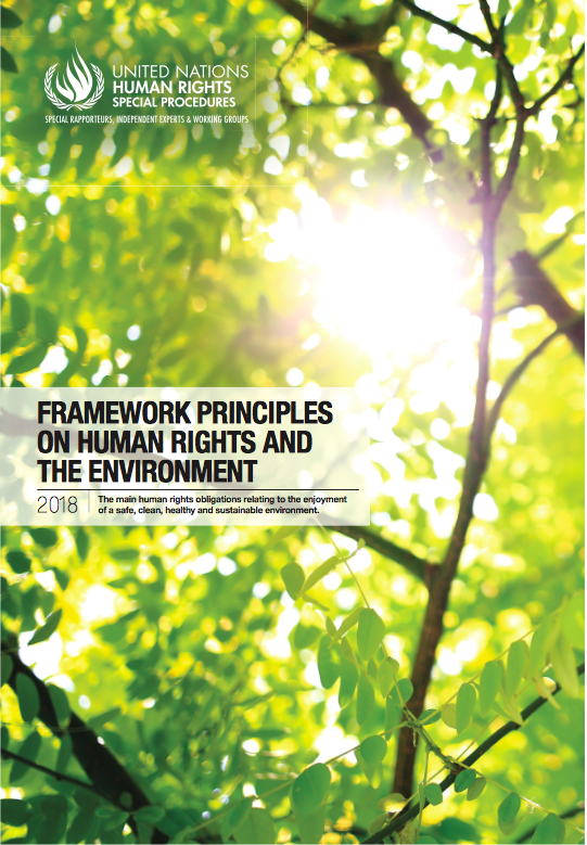 UN Special Rapporteur's Framework Principles on Human Rights and the Environment (2018)