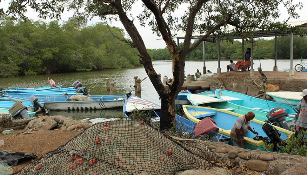A Fight to Put Artisanal Fishers on the Map in Costa Rica