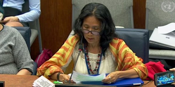 Indígenas de Bolivia Denuncian ante la ONU que Megaproyectos Amenazan su Existencia