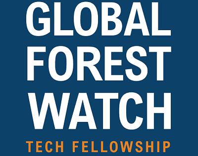 Global Forest Watch Tech Fellowship Open for Applications