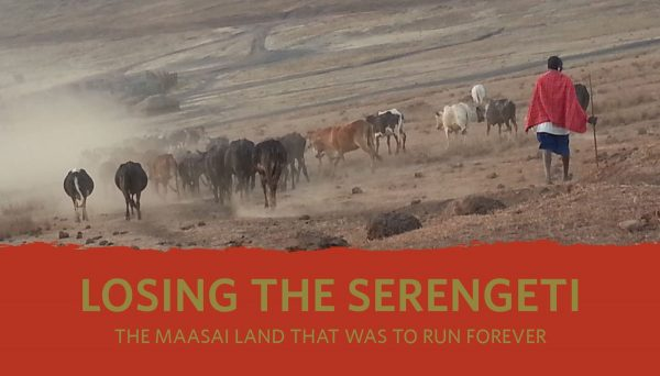 The True Costs of Safari Tourism: Foreign Companies Devastate Tanzania's Maasai in the Name of Conservation