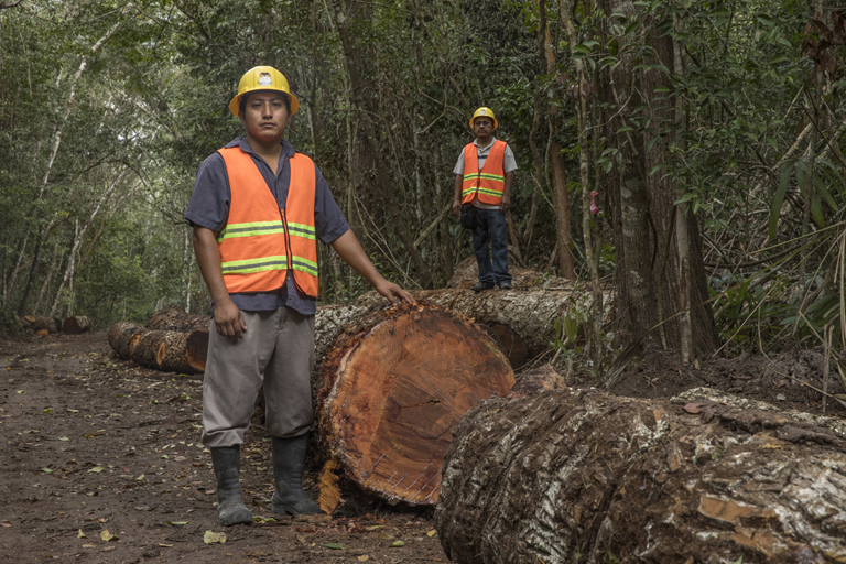 Mexico's ejidos find sustainability by including women and youth