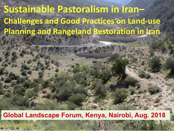 Rangelands Initiative panel at the Global Landscapes Forum