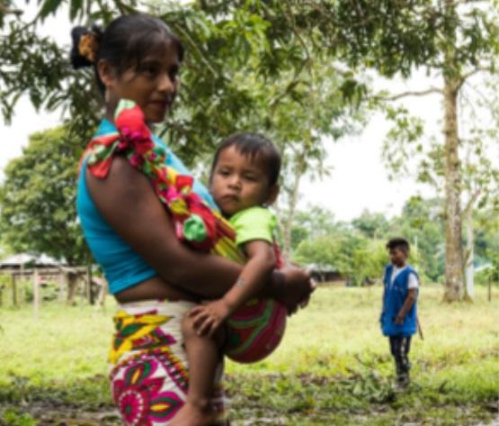 Los TICCA en Colombia – Dos Boletines para Saber Más…!