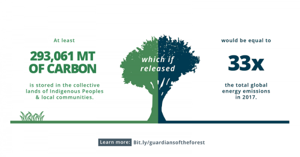 New analysis: Indigenous Peoples and Local Communities protect 5 times more carbon than previously thought