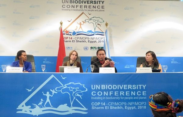 Strong showing of ICCA Consortium at biennial UN CBD COP 14 summit leads to important gains in key decisions