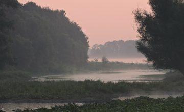 Summer morning Gajna wetland (c) BED
