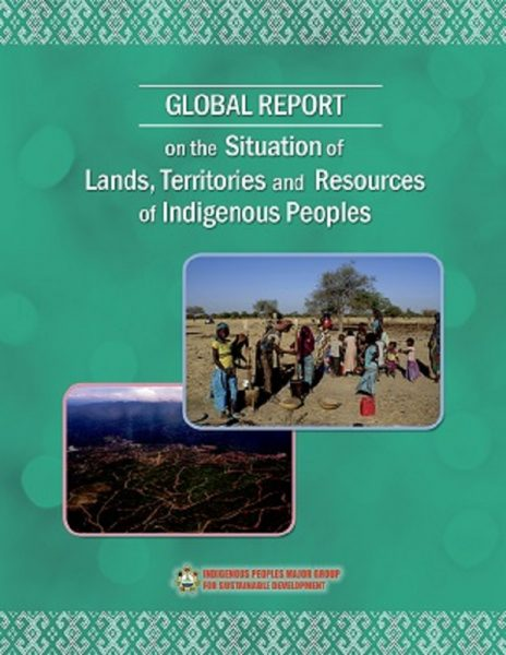 Global Report on the Situation of Lands, Territories and Resources of Indigenous Peoples