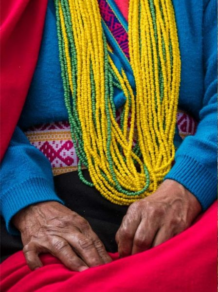 Divulgación de la iniciativa de apoyo a los TICCA – territorios de vida en Colombia