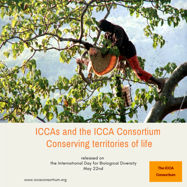 Our New Film released: ICCAs and the ICCA Consortium – Conserving territories of life