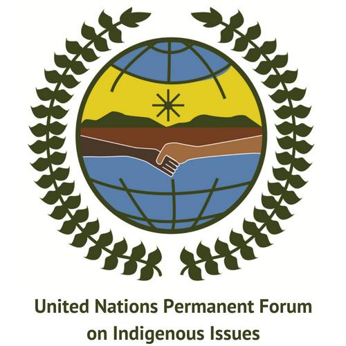 The ICCA Consortium at the UNPFII 2019
