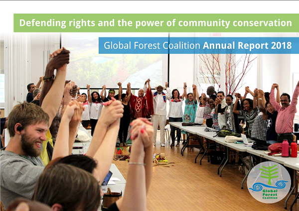 Global Forest Coalition Publishes its Annual Report 2018