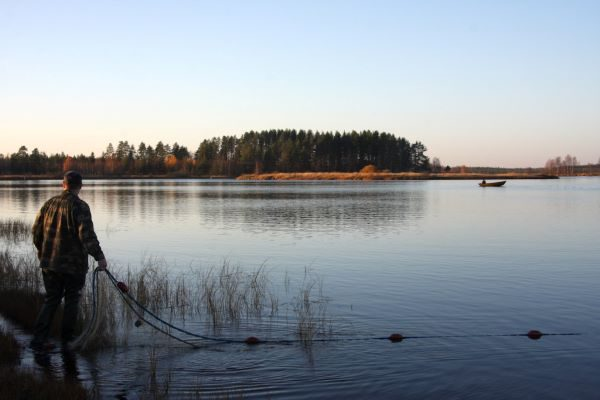 Koitajoki River Documented in a New Seining Film