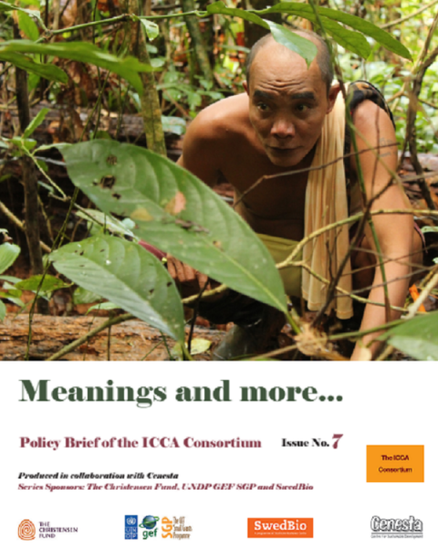 ICCA Consortium Policy Brief no 7 – Meanings and More…
