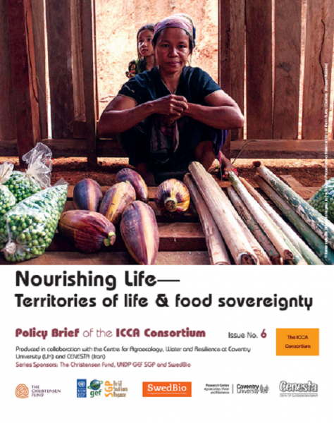 ICCA Consortium Policy Brief no 6 – Nourishing Life -Territories of Life & Food Sovereignty