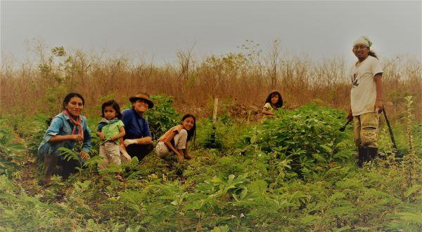Desde los Territorios de Vida Mayas: Esta Pandemia Resalta Tanto Nuestras Carencias Como Nuestras Fortalezas y Estrategias