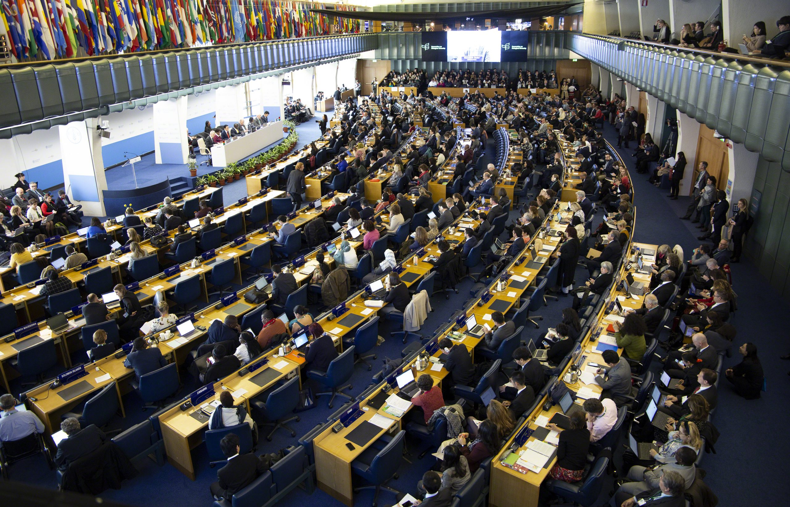 1 – view of OEWG-2 plenary – ENB 24 Feb