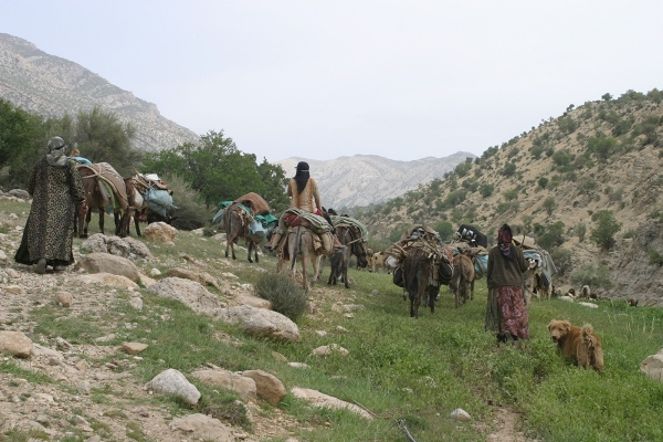 COVID-19 Places Iran's Nomadic Pastoralists at a Crossroads