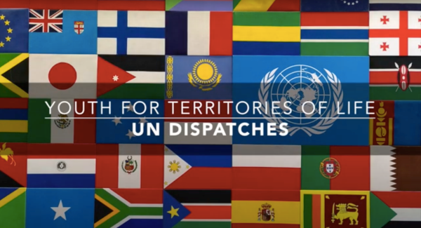 UN Dispatches: Short Film on Youth Perspectives on Global Biodiversity Negotiations