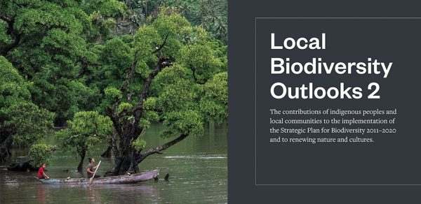 Local Biodiversity Outlooks published ahead of UN Biodiversity Summit