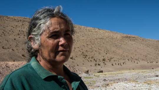 Protecting Indigenous lands: lessons from Chile